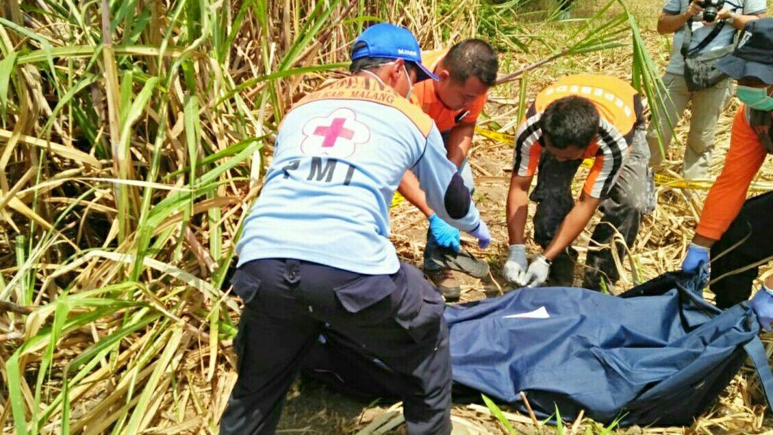 Evakuasi mayat Mr.X di kebun Tebu