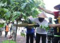 Sofyan Edi Jarwoko, Wakil Walikota Malang sedang memetik biji kopi Tulang